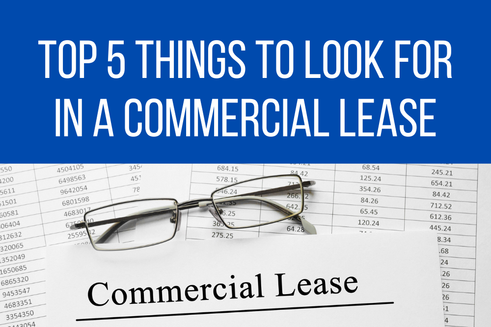 Top 5 things to look for in a commercial office lease